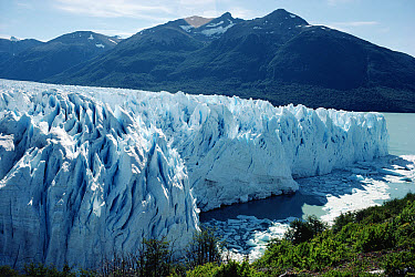 Perito Moreno Glacier actively advancing into Lake Argentina, Los Glaciares National Park, Argentina  -  Tui De Roy