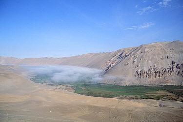 Lluta valley with sea fog masking inversion layer, inland from Arica, Atacama Desert, Chile  -  Tui De Roy