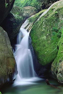 Clear mountain fed stream, Atlantic Forest, Serra Dos Orgaos National Park, Brazil  -  Tui De Roy