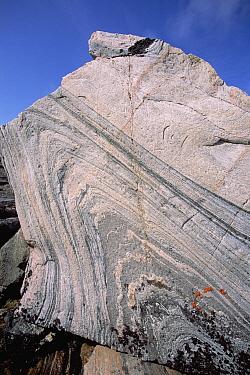 Geologic folding, Digges Island, Hudson Bay, Canada  -  Tui De Roy