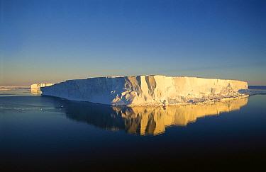 Tabular icebergs, late summer sun, Prince Olav Coast, East Antarctica  -  Tui De Roy