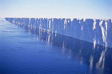 Fimbul Ice Shelf, Princess Martha Coast, East Antarctica  -  Tui De Roy