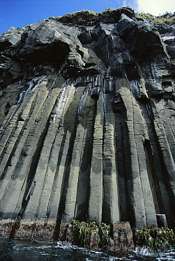 Columnar joining in basalt formation, Smoothwater Bay, Campbell Island, New Zealand  -  Tui De Roy