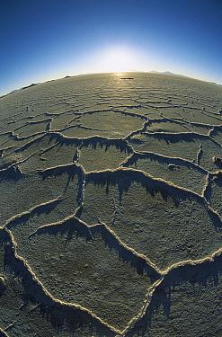 Hexagonal crystallization fissures in 100 kilometer wide, 500 kilometers thick and 12,000 year old Salar de Uyuni salt pan, altiplano, Potosi District, Bolivia  -  Tui De Roy