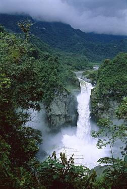 San Rafael Falls on the Coca River squeezes through a lava canyon in wet temperate rainforest, Ecuador  -  Tui De Roy