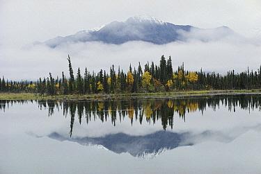 Alaska Range reflected in Slana Slough in fall, Alaska  -  Michael Quinton