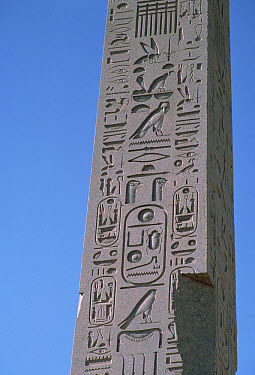 Obelisk with Scarab Beetle or Dung Beetle design, Egypt  -  Mitsuhiko Imamori
