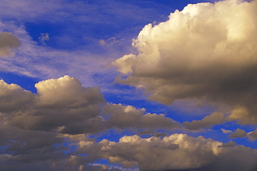 Colorful clouds against blue sky, New Mexico