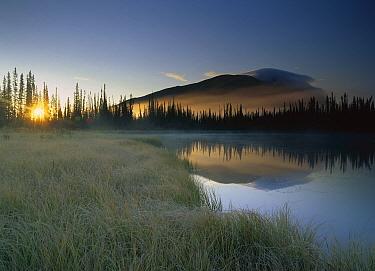 Pond reflecting Nisling Range, Yukon Territory, Canada