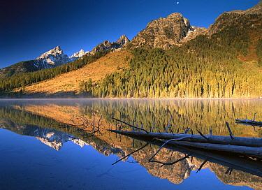 Teton Range reflecting in String Lake, Grand Teton National Park, Wyoming  -  Tim Fitzharris