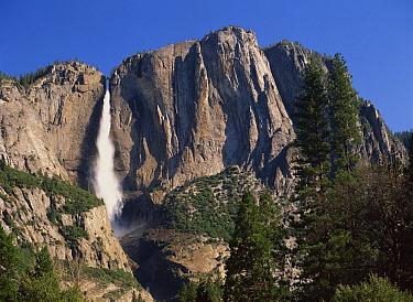 Yosemite Falls, Yosemite National Park, California  -  Tim Fitzharris