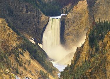 Yellowstone Falls and Grand Canyon of Yellowstone National Park, Wyoming  -  Tim Fitzharris