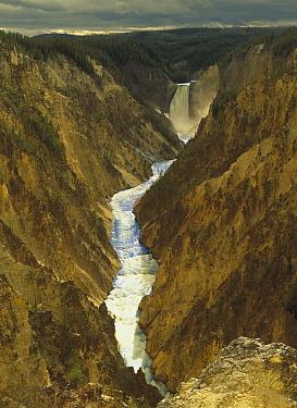 Lower Yellowstone Falls and Grand Canyon of Yellowstone National Park, Wyoming  -  Tim Fitzharris