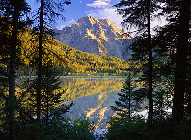 Mt Moran and String Lake, Grand Teton National Park, Wyoming  -  Tim Fitzharris