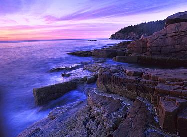Atlantic coast near Thunder Hole, Acadia National Park, Maine  -  Tim Fitzharris