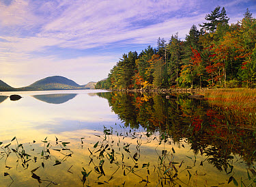 Eagle Lake, Mount Desert Island, Acadia National Park, Maine  -  Tim Fitzharris