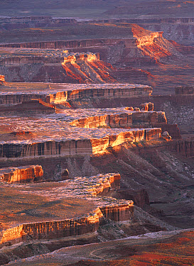 View from Grandview Point, Canyonlands National Park, Utah  -  Tim Fitzharris