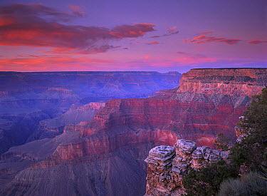 View of the South Rim from Pima Point, Grand Canyon National Park, Arizona  -  Tim Fitzharris