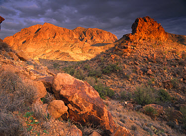 Stormy skies over the Chisos Mountains, Big Bend National Park, Texas  -  Tim Fitzharris