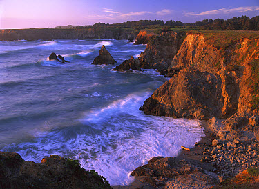 Beach at Jughandle State Reserve, Mendocino County, California  -  Tim Fitzharris