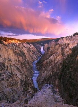 Lower Yellowstone Falls, Yellowstone National Park, Wyoming  -  Tim Fitzharris