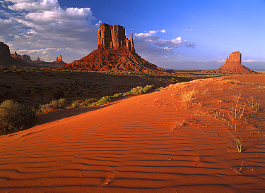 Sand dunes and the Mittens, Monument Valley Navajo Tribal Park, Arizona  -  Tim Fitzharris