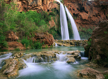 Havasu Creek which is lined with Cottonwood trees, being fed by one of its three cascades, Havasu Falls, Grand Canyon, Arizona  -  Tim Fitzharris