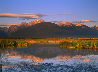 Wind River Range and Ninepipe National Wildlife Refuge with extensive marshlands, Wyoming  -  Tim Fitzharris