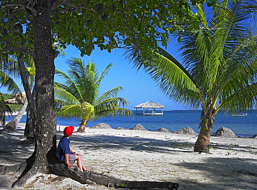 Tourist resting under palm trees on beach at Palmetto Bay, Roatan Island, Honduras  -  Tim Fitzharris