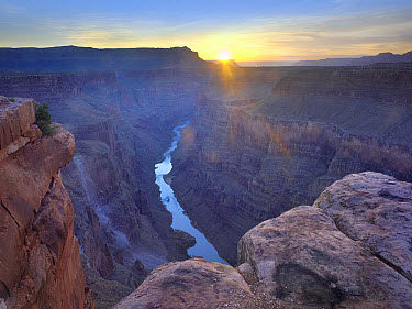 Sunrise as seen from Toroweap Overlook, Grand Canyon National Park, Arizona  -  Tim Fitzharris