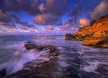 Surf crashing on rocks at Keoneloa Bay, Kauai, Hawaii  -  Tim Fitzharris