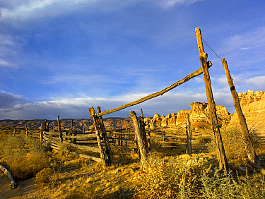 Abandoned wooden corral, Kaiparowits Plateau, Grand Staircase-Escalante National Monument, Utah  -  Tim Fitzharris