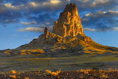 El Capitan, also known as Agathla Peak, the basalt core of an extinct volcano, Monument Valley Navajo Tribal Park, Arizona  -  Tim Fitzharris