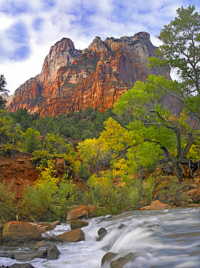 Court of the Patriarchs, Zion National Park Utah  -  Tim Fitzharris