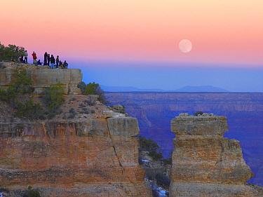 Tourists enjoying sunset and rising full moon at Yaki Point, Grand Canyon National Park, Arizona  -  Tim Fitzharris