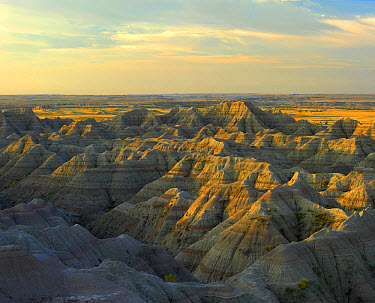 White River Overlook showing sandstone striations and erosional features, Badlands National Park, South Dakota  -  Tim Fitzharris