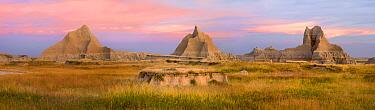 Landscape showing erosional features in sandstone amid grassland, Badlands National Park, South Dakota  -  Tim Fitzharris