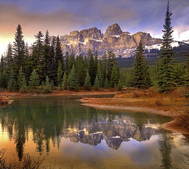 Castle Mountain and boreal forest reflected in lake, Banff National Park, Alberta, Canada  -  Tim Fitzharris
