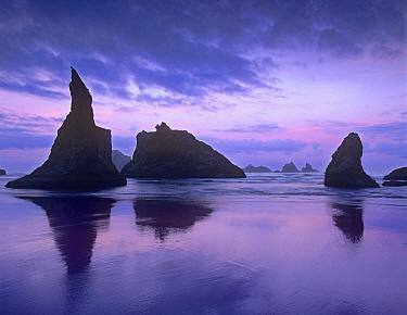 Sea stacks at dusk along Bandon Beach, Oregon  -  Tim Fitzharris