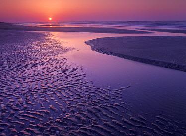 Sunrise at Bolivar Flats, Texas  -  Tim Fitzharris