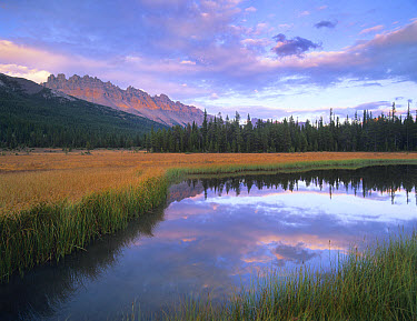 Dolomite Peak and Bow River backwaters, Banff National Park, Alberta, Canada  -  Tim Fitzharris