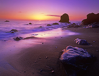 Enderts Beach at sunset, Redwood National Park, California  -  Tim Fitzharris