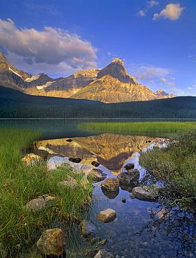 Mount Chephren and Waterfowl Lake, Banff National Park, Alberta, Canada  -  Tim Fitzharris