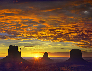 The Mittens and Merrick Butte at sunrise, Monument Valley, Arizona  -  Tim Fitzharris
