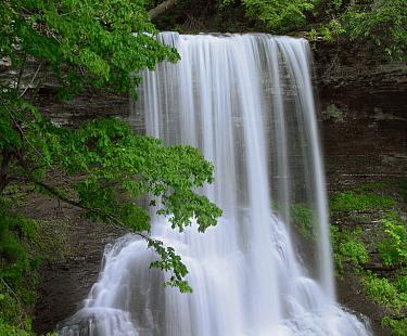 Cascading waterfall in Jefferson National Forest, Virginia  -  Tim Fitzharris