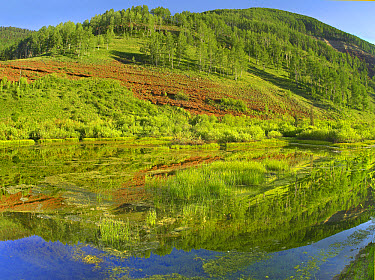 Rico Mountains reflected in Dolores River backwater near Rico, Colorado  -  Tim Fitzharris