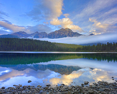 Pyramid Mountain and boreal forest reflected in Patricia Lake, Jasper National Park, Alberta, Canada  -  Tim Fitzharris