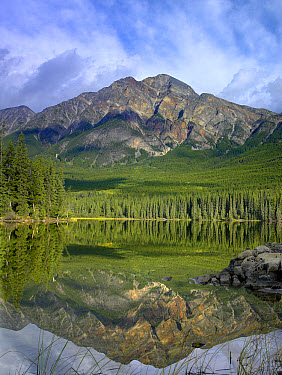Pyramid Mountain and boreal forest reflected in Pyramid Lake, Jasper National Park, Alberta, Canada  -  Tim Fitzharris