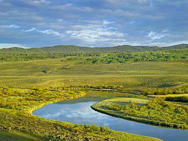 Cloudy skies over Green River, Bridger-Teton National Forest, Wyoming  -  Tim Fitzharris