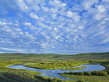 Cloudy skies over the Green River Bridger-Teton National Forest, Wyoming  -  Tim Fitzharris